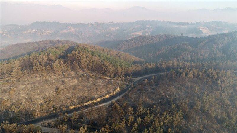 Bakan'dan Adana'daki orman yangınıyla ilgili açıklama