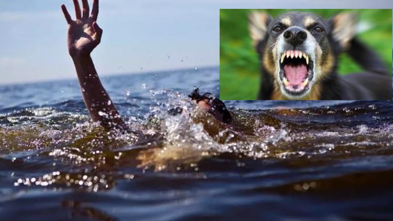 Köpeğin saldırısından kurtulmak için atladığı denizde boğuldu