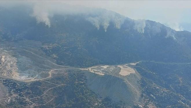 Aydın'daki orman yangınına tutuklama…