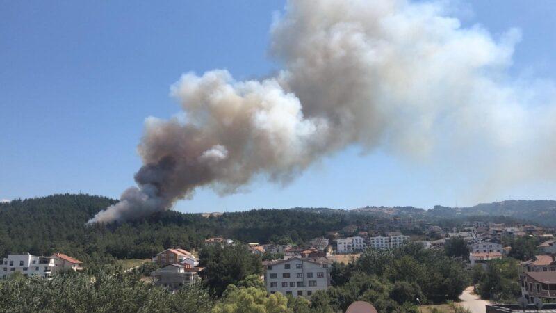 Bursa'da korkulan oldu! Yangın villalara sıçradı