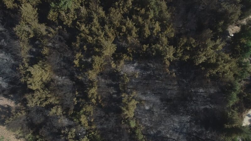 Bursa'daki orman yangınının boyutu havadan böyle görüntülendi