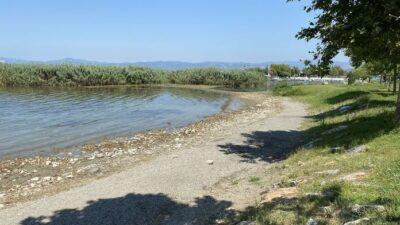 İznik Gölü'nde korkutan görüntü…