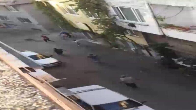 Görüntü Bursa'dan… Top oynayan çocuklara saldırdı