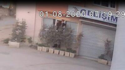 Teknoloji faresi önce kameraya sonra polise yakalandı…