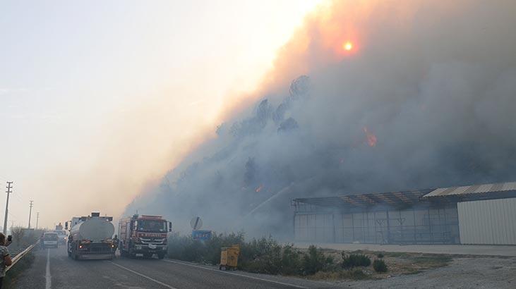 50 ev tahliye edildi! Korkutan yangın