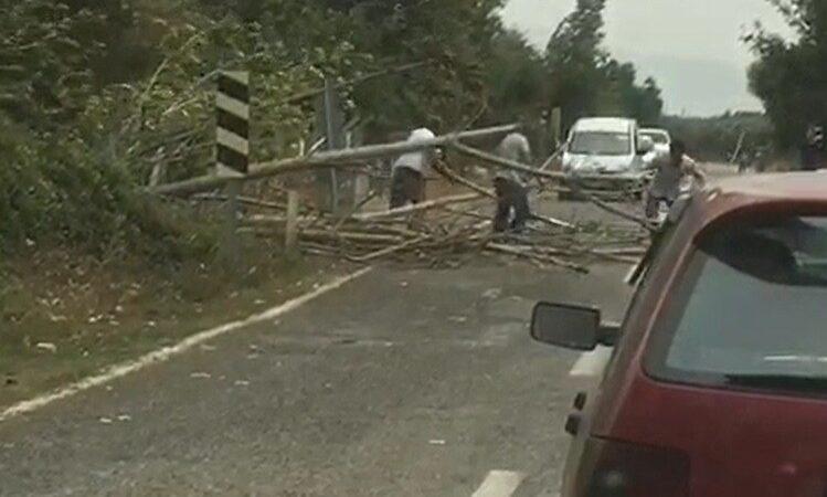 Bursa'da ağaçlar devrildi, yol trafiğe kapandı
