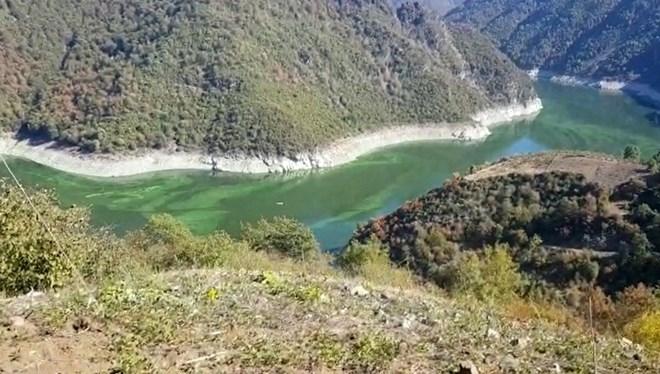 Baraj yeşile boyandı, ölü balıklar kıyıya vurdu