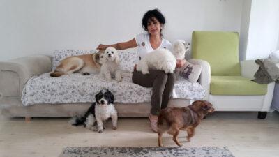 Yer: Bursa… Hayatını sokak hayvanlarına adadı