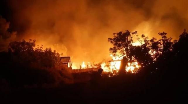 Muğla'da yangın: 6 ahşap ev ile 2 dönüm ormanlık alan zarar gördü