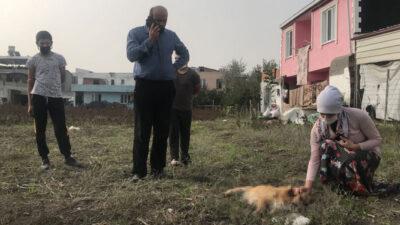 Yer: Bursa… Ölen köpeğinin ardından gözyaşı döktü