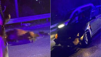 Bursa'da başıboş at kazaya neden oldu