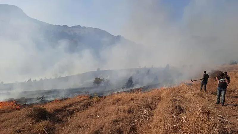 Kayseri'de orman yangını! Belediye Başkanı'ndan açıklama