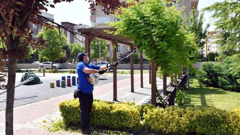 Park ve bahçelerde tedbir üst düzeyde