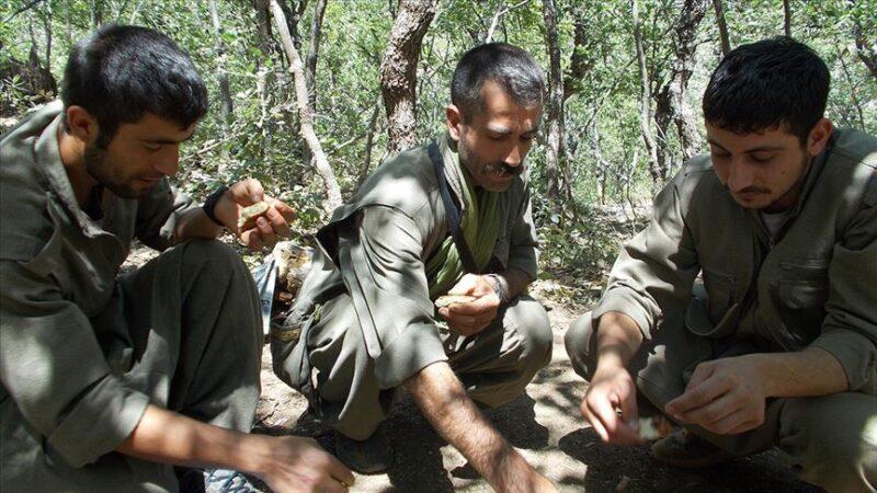 Metropollere saldıracaklardı! 4 PKK'lı terörist yakalandı