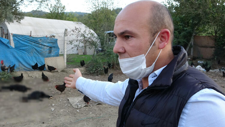 Bursa'da köpekleri komşusu tarafından öldürülen çiftlik sahibi: Bu işin peşini bırakmayacağım