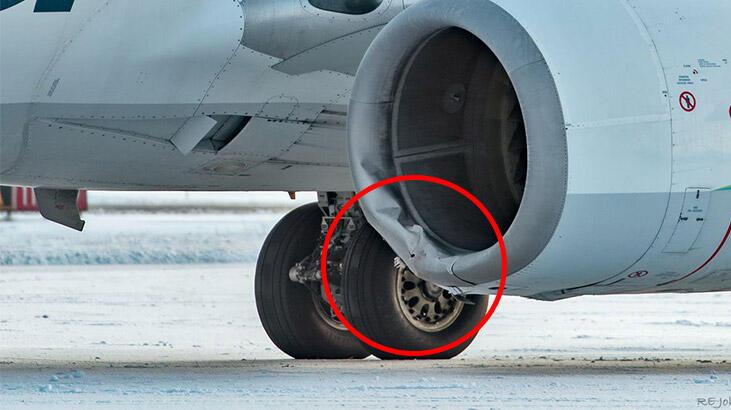 Akılalmaz olay… Uçak ayıya çarptı!