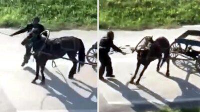 Bursa'da dehşet…Yükü çekmeyen atı böyle kırbaçladı