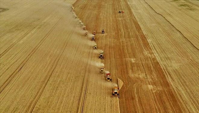 Tarım ve hayvancılıkta destek miktarları belli oldu