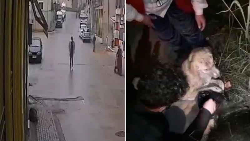 Yer: Bursa… Bir yanda insanlık diğer tarafta vicdansızlık