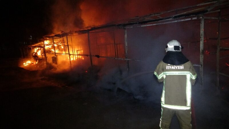 At çiftliğinde yangın: 10 hayvan telef oldu