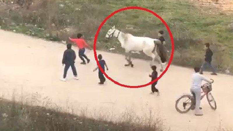Bursa'da yaralı atla oyuna hayvanseverlerden tepki