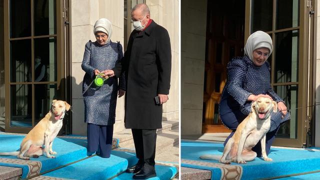 Emine Erdoğan, Cumhurbaşkanı Erdoğan'ı 'Leblebi' ile uğurladı
