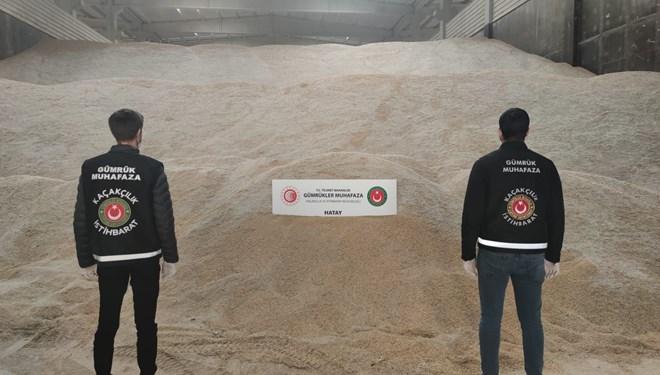 Hatay'da 5 bin ton genetiği değiştirilmiş pirinç ele geçirildi