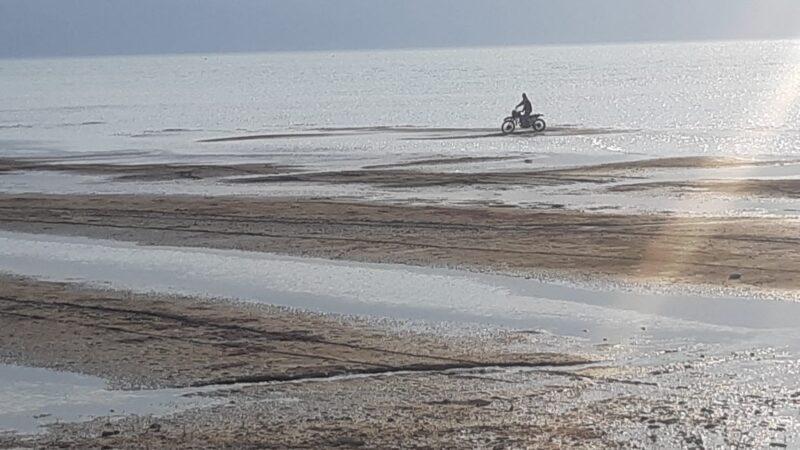 İznik Gölü onlara kaldı! '55 yıldır böylesini görmedim'