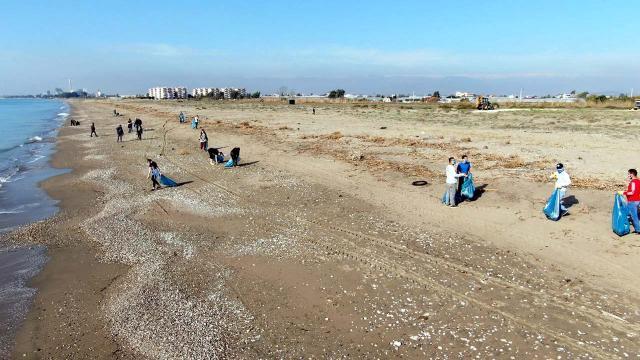 Deniz kaplumbağalarının yuvalama alanı temizlendi