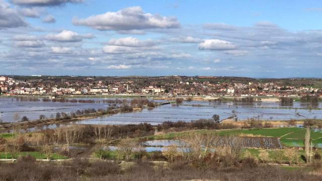 Ergene Nehri taştı, tarım arazileri su altında kaldı