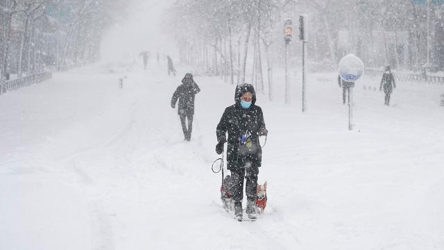 Son yılların en yoğun kar fırtınası! Ülkede hayat durdu