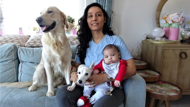 Yer: Bursa… Köpek yeni doğan bebeği kimseyle paylaşmıyor