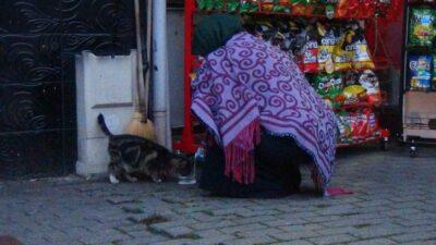 Bursa'da soğuk havada iç ısıtan görüntü