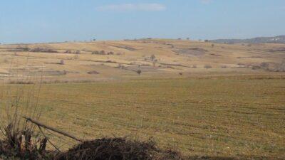 Bursalı çiftçi dertli! Daha şimdiden yüzde 40 fire var…