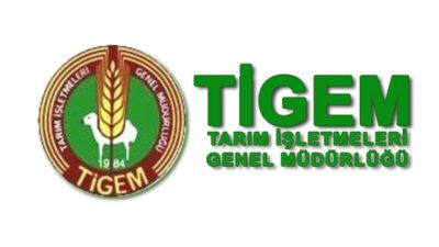 TİGEM Bursa'daki taşınmazlarını kiralayacak…