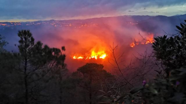Trabzon'da 2 ilçede örtü ve orman yangını