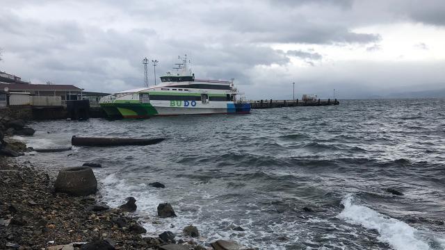 Bursa'da deniz otobüslerinin 4 seferi iptal edildi