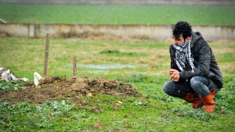 Yer: Bursa… 27 yıllık can yoldaşını mezarında da yalnız bırakmadı