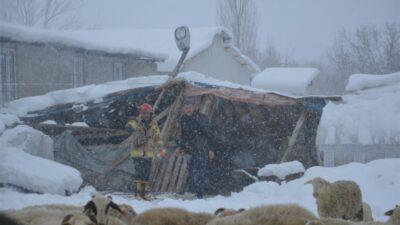 Bursa'da ahırın çatısı çöktü! Onlarca küçükbaş göçük altında kaldı