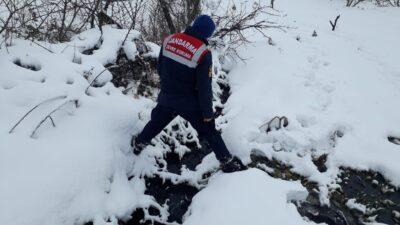 Bursa'da dereyi kirleten zeytinyağı fabrikasına ceza