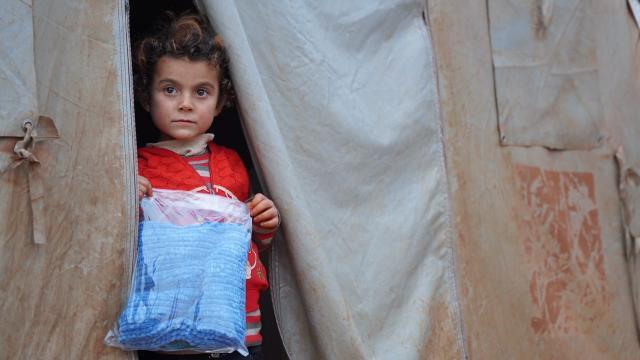 BM İdlib'e 63 TIR insani yardım gönderdi