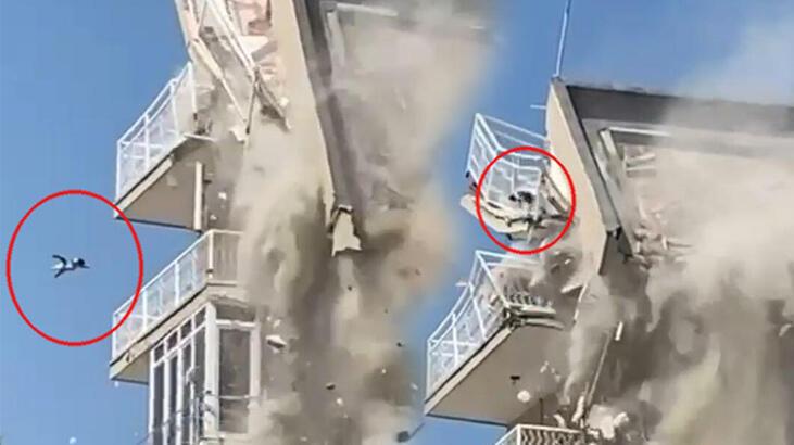 Yıkım sırasında çatıdan düşen kedi, hayati tehlikeyi atlattı