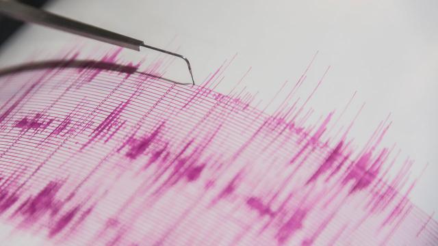 Muş'ta 4,2 büyüklüğünde deprem