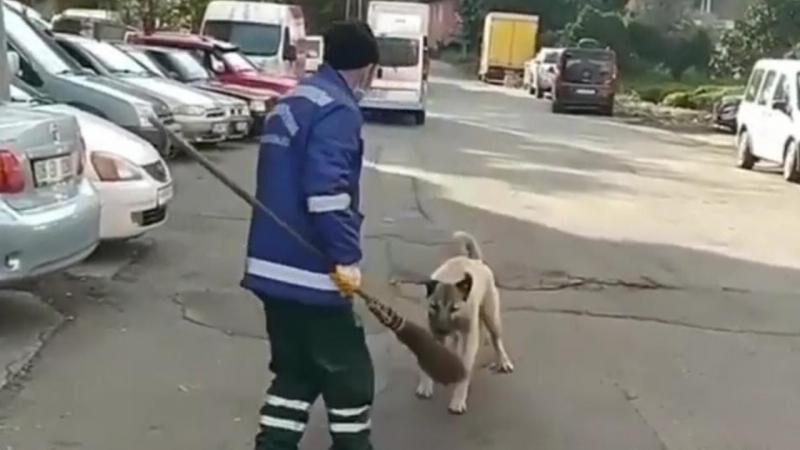 Süpürgesini alan köpeğe böyle seslendi: O bana zimmetli