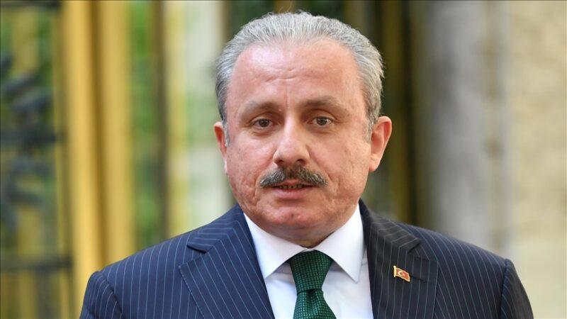 Şentop'tan Türk Cumhuriyetlerine övgü