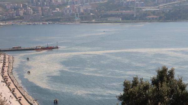 Görüntüler Bursa'dan… Görenler şaşkın! Sahil beyaza büründü