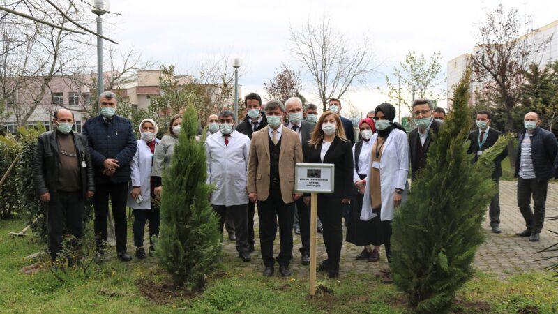 Bursa'da Kovid-19'dan hayatını kaybetmişti! Dr. Yavuz Durmuş anısına fidan dikildi