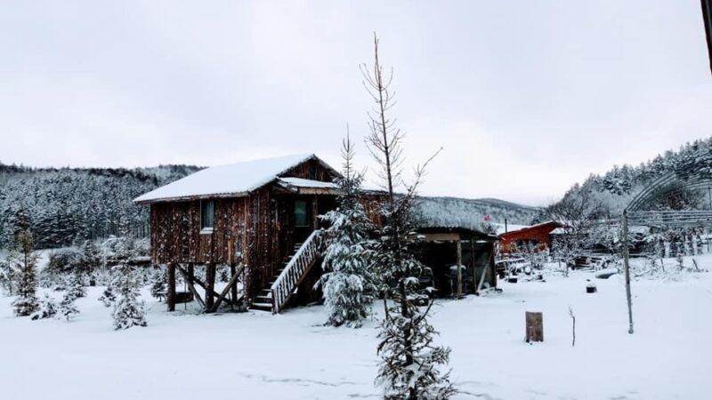 Bursa'da nisanda kar sürprizi