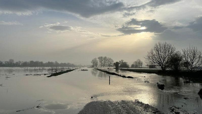 Bursa'da 35 bin dönüm arazi su altında kaldı