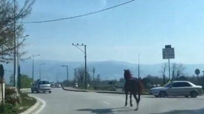 Bursa trafiğinde dört nala